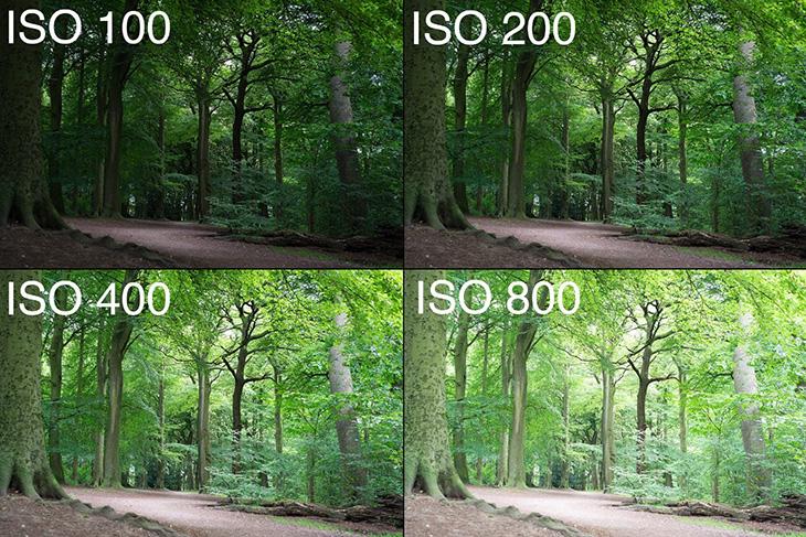 Điều chỉnh mức ISO để tăng sáng