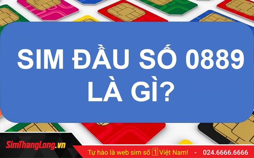 sim-dau-so-0889