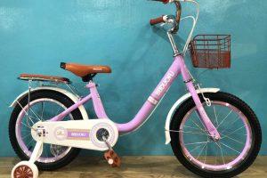 Tổng hợp các mẫu xe đạp trẻ em đẹp và độc mới nhất