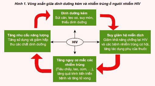Liên quan giữa dinh dưỡng và HIV