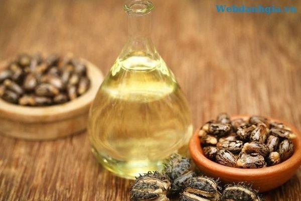 Tinh dầu dưỡng tóc từ hạt thầu dầu