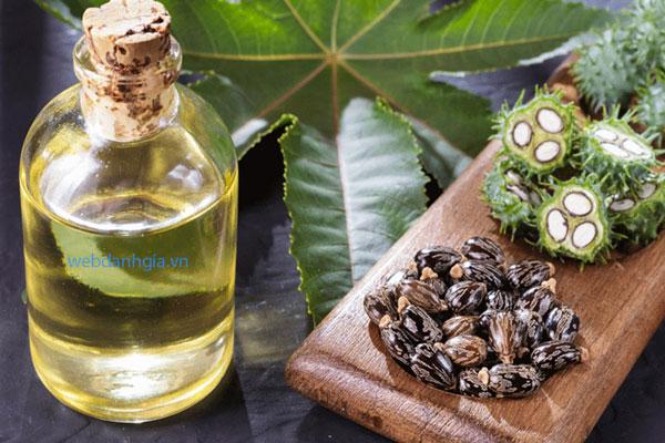 Dầu thầu dầu dưỡng tóc nguyên chất từ hạt thầu dầu